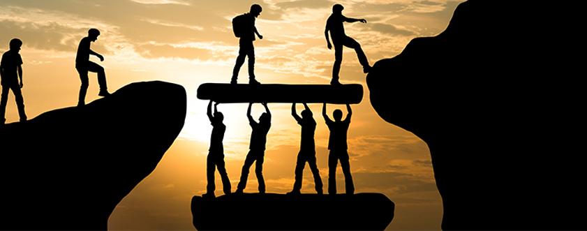 team development & leadership coaching