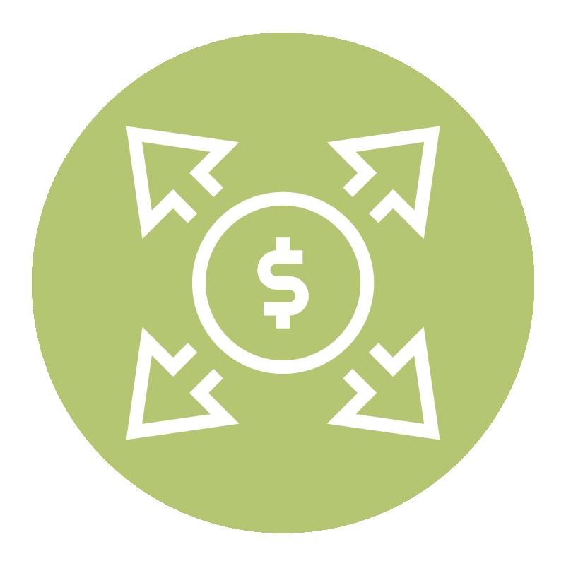 maximize enterprise value icon